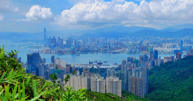 Why do People Go to Hong Kong